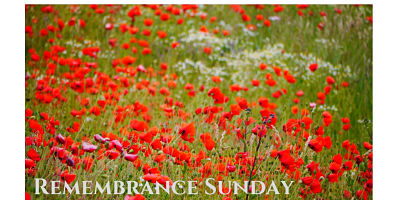 Remembrance Sunday_opt
